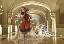 The Cellist By Meredith Day